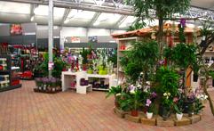 Floracentrum FERENČÍK fotografie 2
